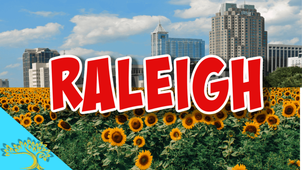 raleigh nc skyline with sunflowers below